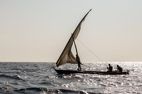 The Ngalawa Cup: A Raw Sailing Adventure